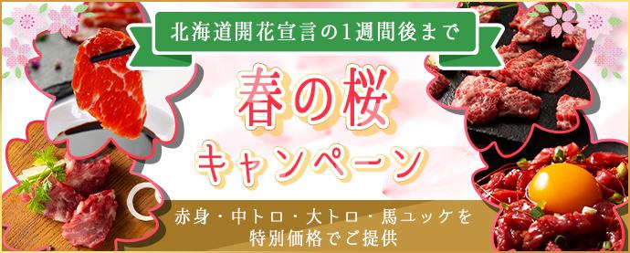 春の桜キャンペーン